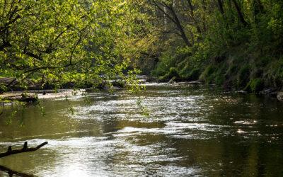 Nationaler Wasserdialog schließt mit umfassenden Handlungsempfehlungen