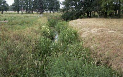 Landkreis stellt Wasserentnahme unter Strafe