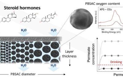 Polymermembranen mit Kohlenstoff-Mikropartikeln entfernen Steroidhormone aus Wasser