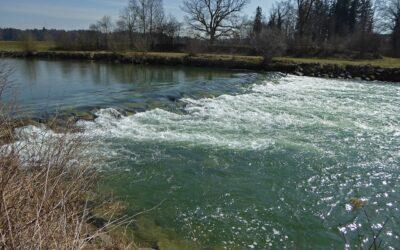 """""""Wasserwirtschaft im Weinberg"""" legt Fokus auf wasserrechtliche Gestattungsverfahren"""