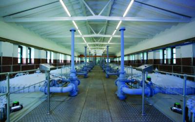 8. Praxistag Wasserversorgungsnetze