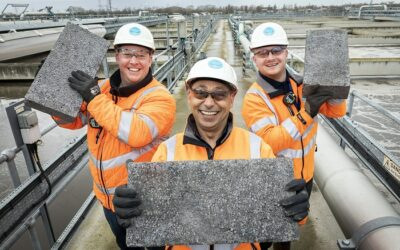 Double eco-friendly: energy efficient bricks made from human waste