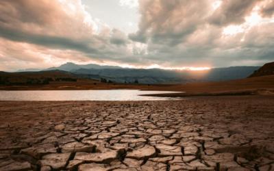 gwf-Webinar-Reihe: Wasserstress – Herausforderungen für die Wasserwirtschaft