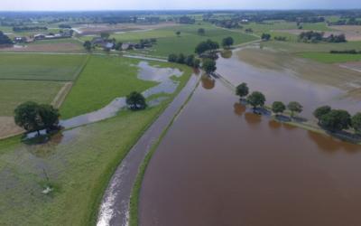 DBU-Projekt: Welche Ursache hat das Grundhochwasser?