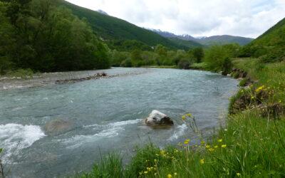 New hope for Balkan Rivers