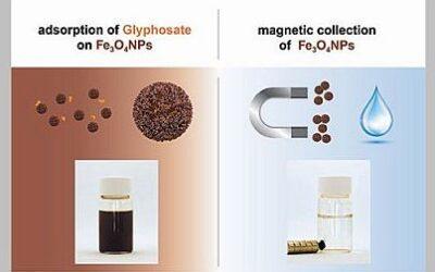 Magnetische Nanopartikeln zur Glyphosatentfernung aus Wasser