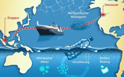 Projekt MICRO-FATE startet mit Pazifik-Expedition am 30. Mai