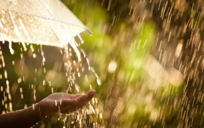 "UN-Weltwassertag 2018 ""Nature for Water"""