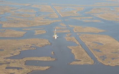 Study shows that Mississippi Delta marshes may disappear in the future