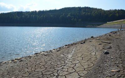 Wassernotstand? Harzwasserwerke wappnen sich für Doppeltrockenjahr