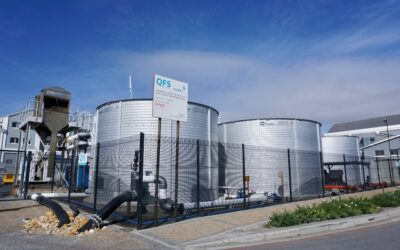 Dirty sea water brings Cape Town desalination plant to a halt