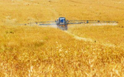 BDE sieht Warenverkehrsfreiheit für Komposte und Gärprodukte in greifbarer Nähe