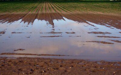 Schweiz: Konsequenter Schutz des Grundwassers gefordert