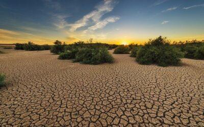 Trinkwasser: Welche Auswirkungen hat die Trockenheit?