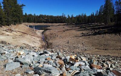 Studie zum Einfluss des Klimawandels auf die Grundwasserneubildung veröffentlicht