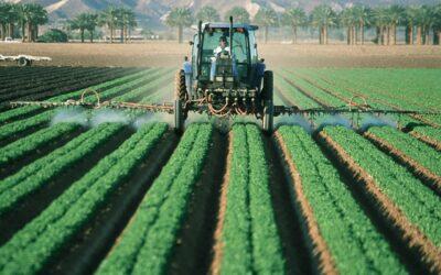 EU verlängert Glyphosat-Zulassung