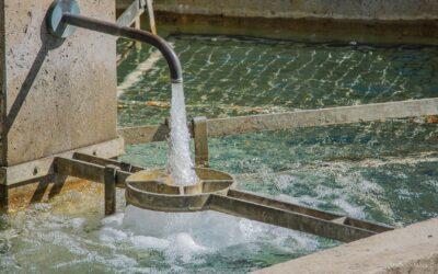 Urbanes Wassermanagement der Zukunft: noch viele offene Fragen