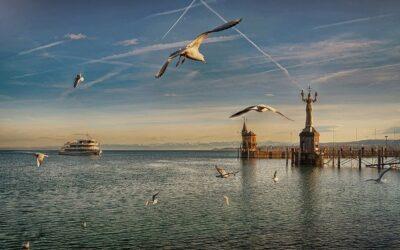 Bodensee-Wasserversorgung: Investitionen in die Zukunft