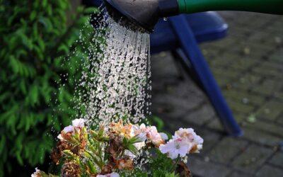 Rekord-Wasserverbrauch beim OOWV