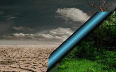 Klimawandel und Wasserversorgung: Baden-Württemberg erarbeitet Masterplan