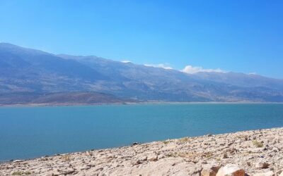 Eco-friendly solution against algal bloom operating successfully in Lebanon