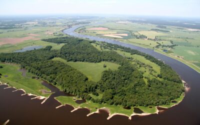 Anbindung des Auwalds Hohe Garbe an die Elbe