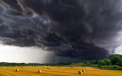 NRW-Ministerin Heinen-Esser über die Folgen extremer Wetterereignisse