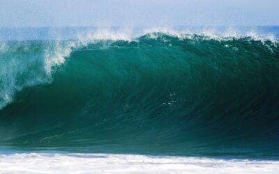 Meere und Ozeane im Fokus