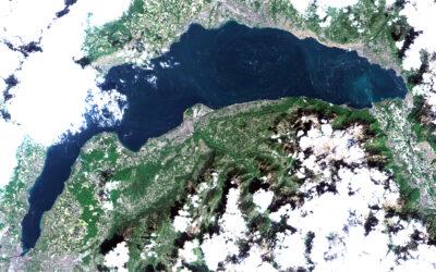 Pollen vizualizes huge gyre in Lake Geneva