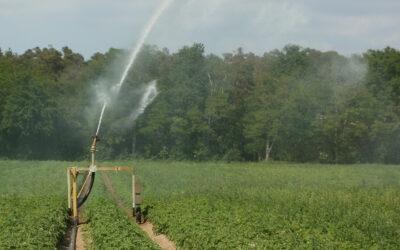 Nach Wassernot kommt Hungersnot