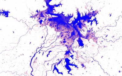 Atlas shows how global surface water resources have changed throughout the last decades