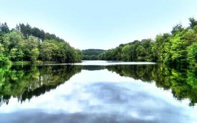 VKU fordert Vorsorgemaßnahmen zur Reduktion gefährlicher Stoffeinträge in Gewässer