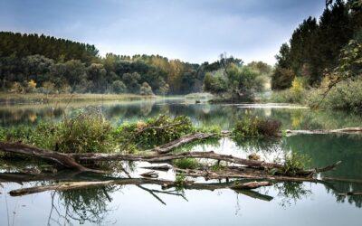 Internationales Gewässermonitoring an der Donau gestartet