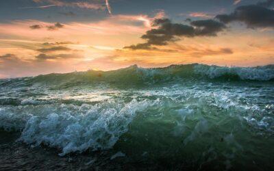 EEA report: European seas remain contaminated