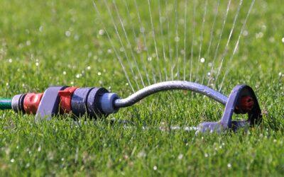 Erste Einschränkungen beim Wassergebrauch