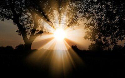Abwasserreinigung durch Sonnenlicht?