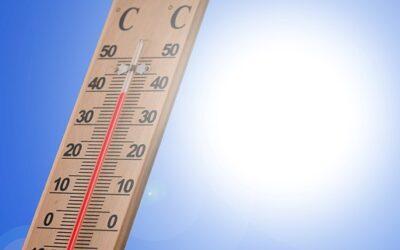 Die Hitze und das Wasser