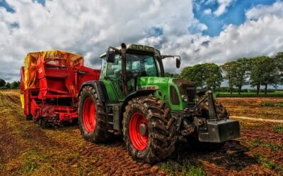 Agrarwende: 'Zukunftskommission Landwirtschaft' eingerichtet