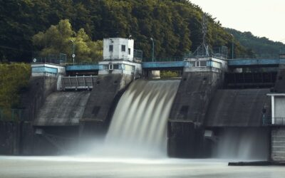 Dams exacerbate impact of climate change on river fish
