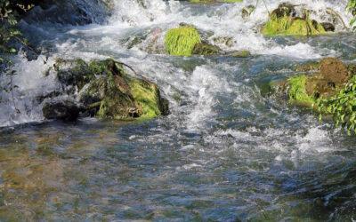 Längster NRW-Fluss wird renaturiert