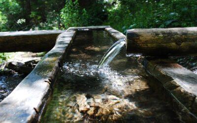 """Projekt """"Zukunftsquelle. Wasser für Generationen"""""""