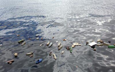 Mikroplastik in allen Gewässern Deutschlands zu finden