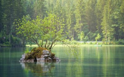 EC reviews progress made in water quality and flood risk management