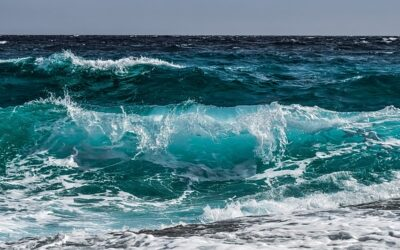 World Bank launches bond series with focus on water and ocean resources