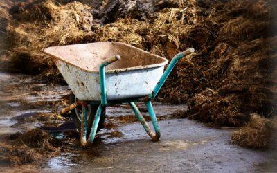 Nitrat könnte Wasserpreise fast verdoppeln