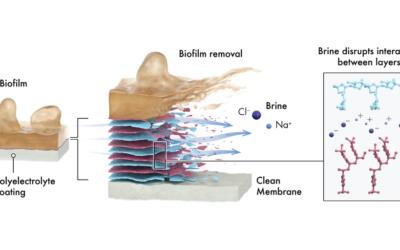 Ablösbare Schicht auf RO-Membranen macht Reinigungschemikalien überflüssig