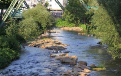 Wupperverband-Projekte an Talsperren, Kläranlagen und Flussläufen