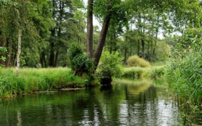 Grundwasser: Spree, Elster und Neiße nach dem Bergbau