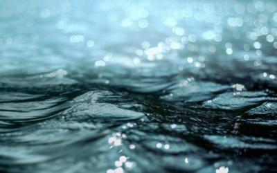 Fernwasserversorgung Elbaue-Ostharz investiert 13 Millionen