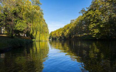 20 Jahre Wasserrahmenrichtlinie: Deutschland liegt weit hinter seinen Zielen zum Gewässerschutz